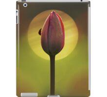 Garden Stories II iPad Case/Skin