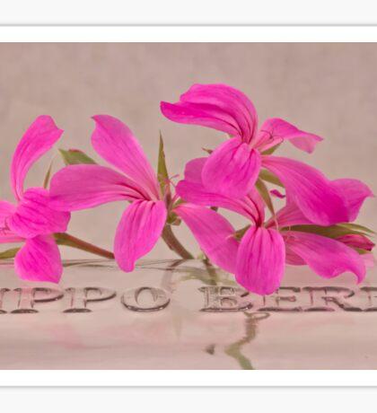 Pink Geranium Blossoms - Macro Sticker