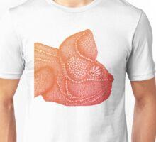 Ombre Chameleon Unisex T-Shirt