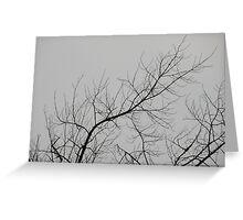 Creepy Gray Trees Greeting Card