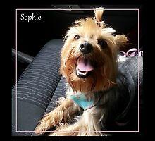 Sophie by Lydia Marano