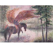 River Pegasus Photographic Print
