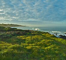 Pacific Coast Sunrise - Cambria, California by Mike Capone