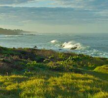 Pacific Coast Sunrise - Cambria, California Sticker