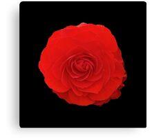 Deep Red Flower Canvas Print