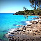Noosa National Park Australia QLD Australia by Jeannine de Wet