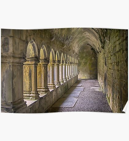 Cloisters at Quin Poster