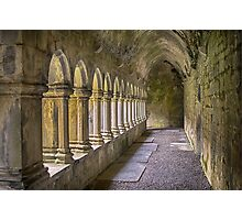 Cloisters at Quin Photographic Print