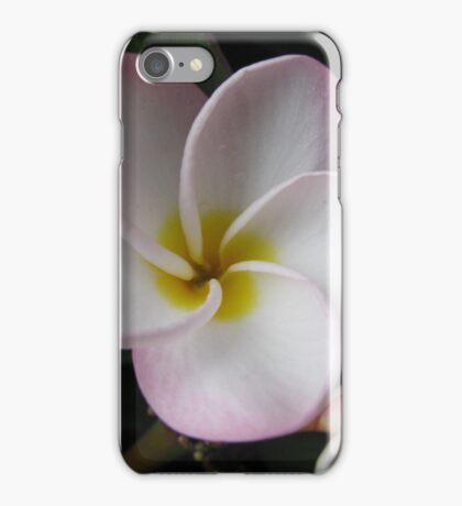 Tropical Plumeria iPhone Case/Skin