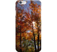 Autumn Trails iPhone Case/Skin