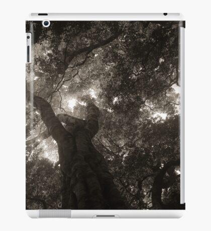 Rainforest Canopy BW iPad Case/Skin