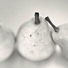 pears II by Adriana Glackin