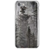 Hauntingly Beautiful iPhone Case/Skin