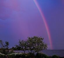 Rainbows by Janet Gosselin
