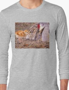 Wants attention Long Sleeve T-Shirt