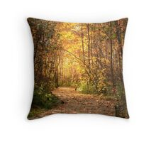 Northern trails Throw Pillow