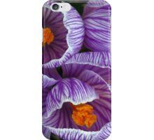 Spring blooms iPhone Case/Skin