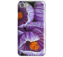 Spring blooms iPhone Case/Skin