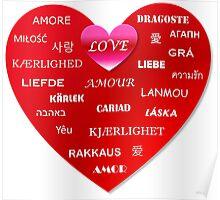 world love Poster