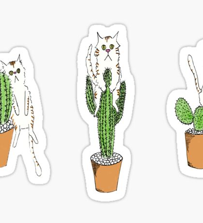 Cactus Cats Sticker
