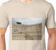 Ancient Amphitheatre Unisex T-Shirt