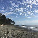 Washington Coast by AmishElectricCo