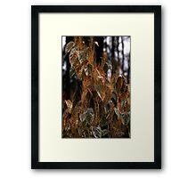 Tufted Leaves Framed Print