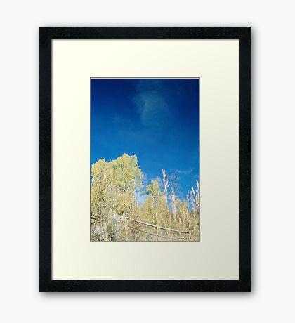 Bluest Sky Framed Print