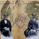 the common seal by Loui  Jover