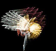 Fireworks Variation # 11 by OrPhotoJohn