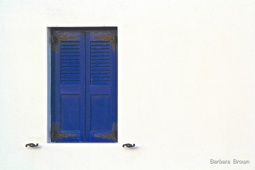 Blue Window by Barbara  Brown