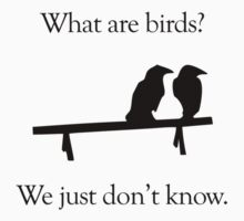 What Are Birds? We Just Don't Know by jezkemp