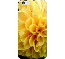 Dahlia designs #2 iPhone Case/Skin