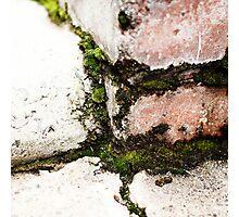 { Corners: where the walls meet #12 } Photographic Print
