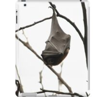 Sleeping Bat iPad Case/Skin