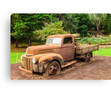 Rusty Ford Pickup / Ute Canvas Print