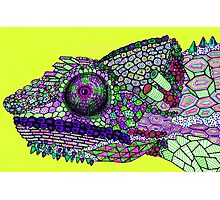 Panther Chameleon!  Photographic Print