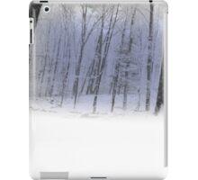Misty Winter Forest Scene iPad Case/Skin