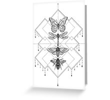 Flying Insects Greeting Card