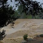 Haruru Falls in Flood.......! by Roy  Massicks
