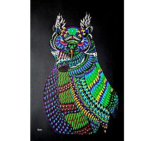 Dynamic Owl Photographic Print