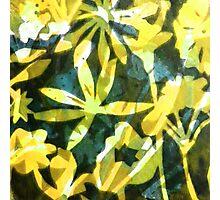 Lemon and Green Flower Pattern Photographic Print