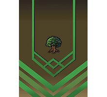 120 Woodcutting Cape - Runescape Photographic Print