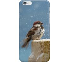 Bird on the water fountain iPhone Case/Skin