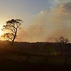 Burning Hills by Sascha Grant