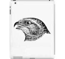 A magnificent eagle drawing iPad Case/Skin