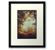 silent forest Framed Print