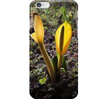 Skunk Cabbage iPhone Case/Skin