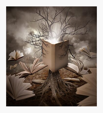 Magical Old Nature Tree Reading Books Photographic Print