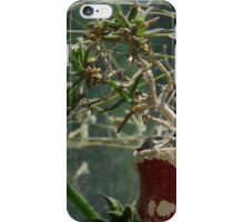 A Really Small Tree iPhone Case/Skin